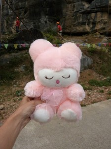 Awesome pink kitten-bear, a worthy reward for a climb well done.